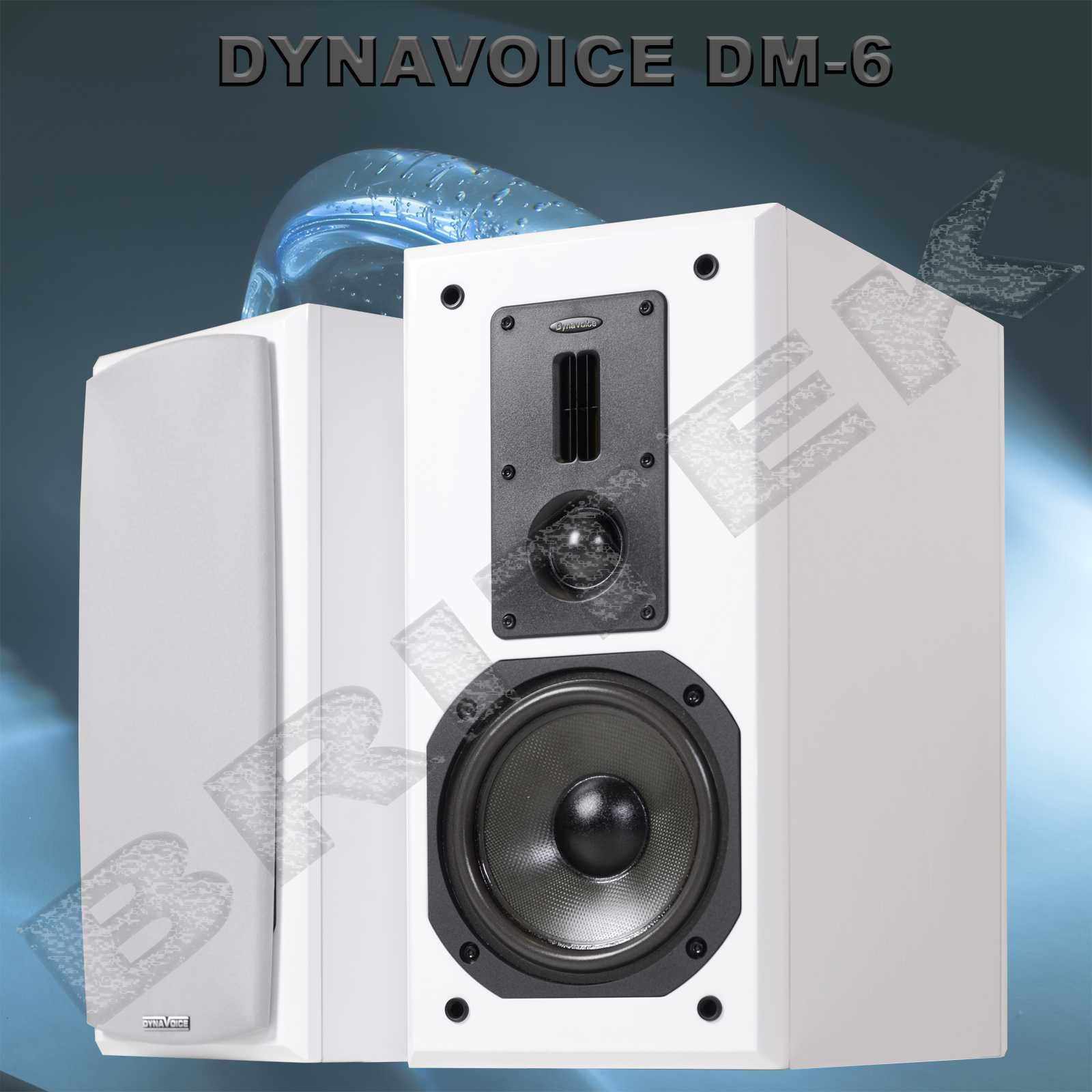 DYNAVOICE DEFINITION DM-6